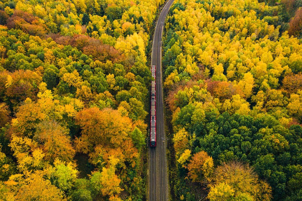 EU Year of Rail FACTSHEET
